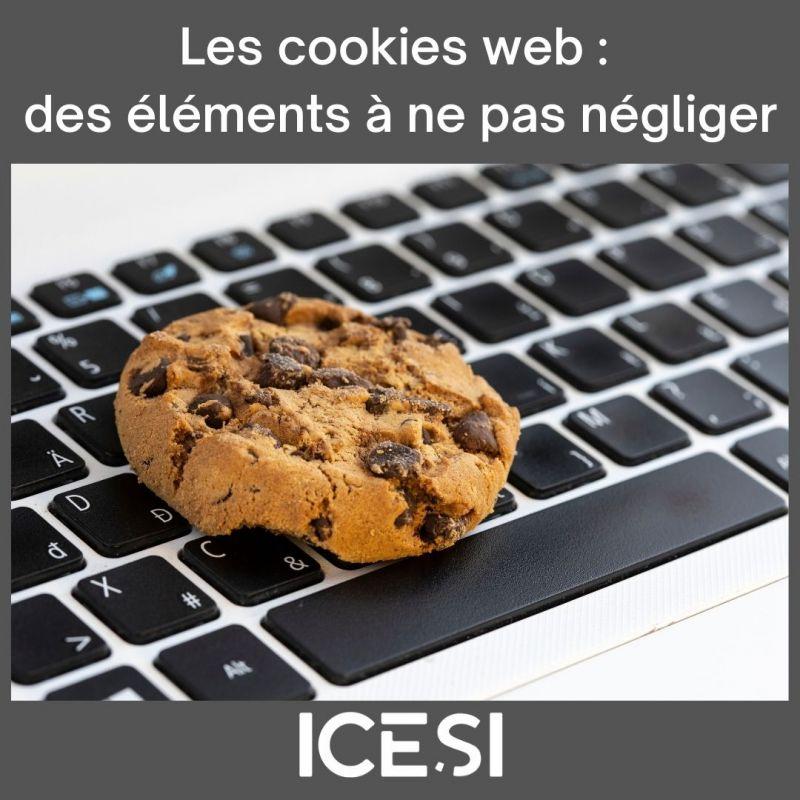 Les cookies web : des éléments à ne pas négliger