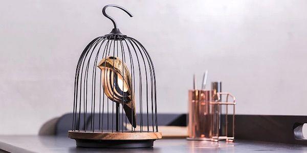 Un oiseau apaisant