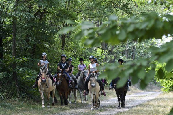 Activité 100% nature avec une promenade à cheval