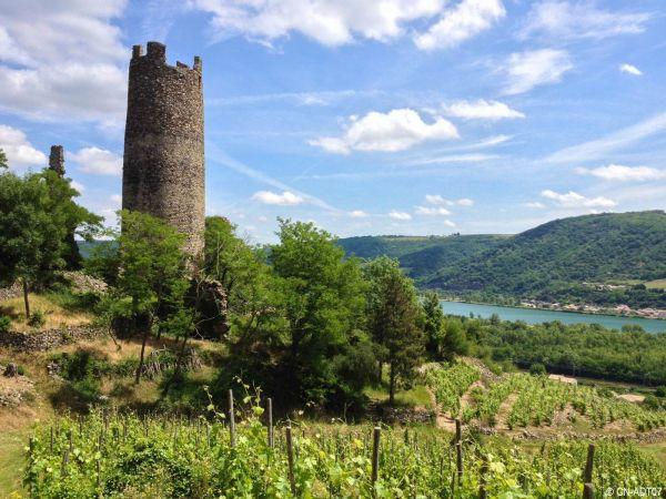 Balade à la tour d'Arras/Rhône