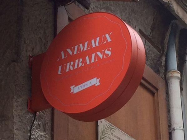 Caisson lumineux rond pour une boutique à Lyon
