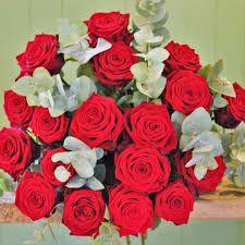 Pour en savoir plus sur les roses