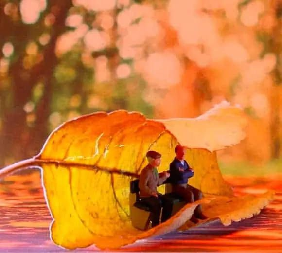 10 conseils pour passer l'automne en douceur